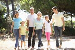 Familjen för tre utveckling på sommarbygd går tillsammans Royaltyfri Foto