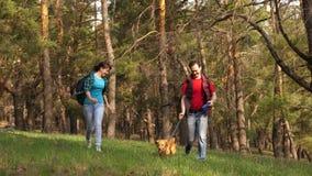 Familjen reser med hunden i tr?n Det lyckliga paret k?r handen - i - handen med obak till och med tr?n Handelsresande farsa, dott arkivfilmer