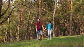 Familjen reser med hunden i tr?n Handelsresande farsa, dotter, husdjur gemensamt arbete av en v?nlig familj Begrepp av sportar lager videofilmer