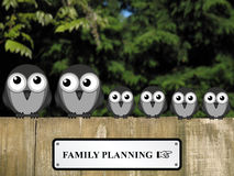 Familjeplanering Royaltyfri Fotografi
