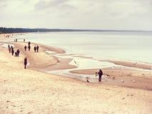 Familjer och vänner som tillsammans spenderar dag på stranden royaltyfri foto