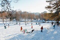 Familjer tycker om sledding på en snöig kulle Royaltyfri Foto