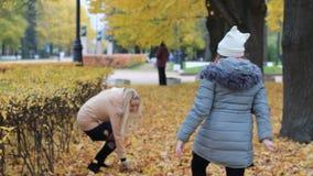 Familjferie i natur - en ung kvinna och hennes tonårs- dotter vilar i hösten parkerar stock video
