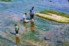 Familjfiske i grunt vatten Royaltyfri Fotografi