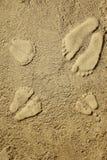 Familjfotspår i sanden på stranden Fotografering för Bildbyråer