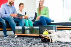 Familjhund som spelar med bollen i vardagsrum royaltyfria foton