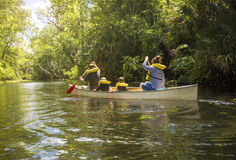 Familjkanotritt ner en härlig tropisk flod royaltyfria bilder