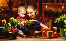 Familjmodern och behandla som ett barn växer blommor, transplantatplantor i gar Arkivbild