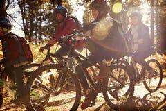 Familjridningen cyklar på en skogbana, slut upp Royaltyfri Fotografi