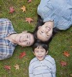 Familjstående på gräset, direkt över arkivfoton