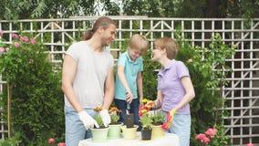 Familjträdgårdsmästare med ungen som planterar blommor i krukor med jord i lantgård lager videofilmer