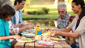 Famille étendu prenant le déjeuner extérieur banque de vidéos