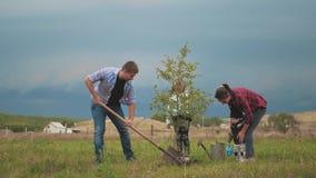 Famille amicale, enfants plantant l'arbre avec le parent dans le jardin clips vidéos