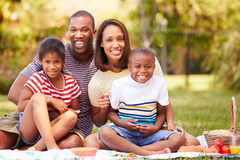 Famille ayant le pique-nique dans le jardin ensemble Photos libres de droits