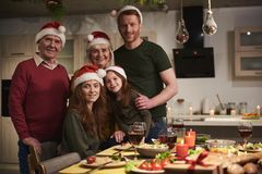 Famille délicieuse célébrant Noël ensemble Image libre de droits