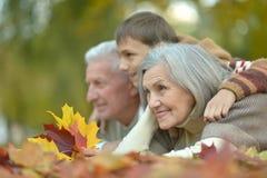 Famille détendant en parc d'automne Image stock