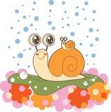 Famille d'escargot un jour pluvieux Photos libres de droits