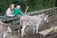 Famille dans le zoo photos stock