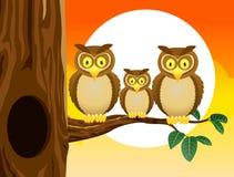 Famille de dessin animé de hibou avec le fond de coucher du soleil Image libre de droits