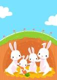 Famille de lapins Photographie stock