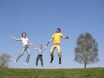 Famille de mouche. source Photo libre de droits