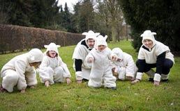 Famille de moutons Photographie stock