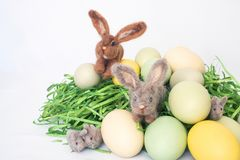 Famille de petits lapins de Felted parmi Pale Colored Eggs et l'herbe photos libres de droits