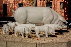 Famille de porc dans la pierre Photos stock