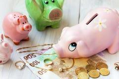 Famille de porcs d'économie Image stock