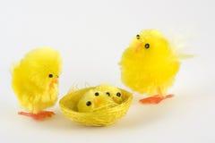 Famille de poulet Image stock