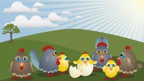 Famille de poulet illustration libre de droits