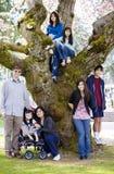 Famille de sept par le grand cerisier en pleine floraison Photo libre de droits