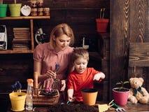 Famille de serre famille heureuse dans la serre famille de serre fonctionnant avec la terre famille et serre chaude de serre images stock