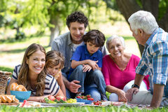 Famille de sourire ayant un pique-nique photo stock