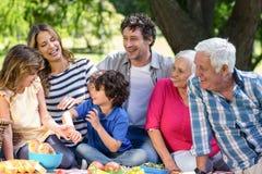 Famille de sourire ayant un pique-nique image stock