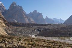 Famille de tour de Trango, flèche de Lobsang et glacier de Baltoro, voyage K2, Photos libres de droits