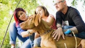 Famille de trois en parc jouant avec leur chien clips vidéos
