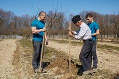 Famille de trois générations plantant un arbre ensemble Photographie stock libre de droits