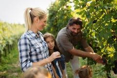 Famille de Winemaker ensemble dans le vignoble Photo libre de droits