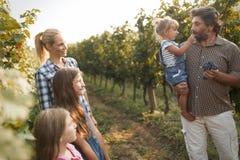Famille de Winemaker ensemble dans le vignoble Photos libres de droits