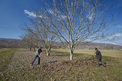 Famille des agriculteurs spring cleaning Image stock