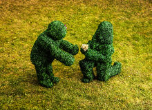 Famille des buissons vivants Photo extérieure de style de conte de fées Photos libres de droits