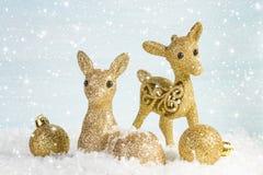 Famille des cerfs communs dans la neige Photographie stock libre de droits