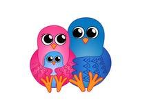 Famille des oiseaux Photos libres de droits