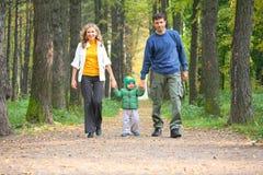 Famille en bois automnal. Images stock