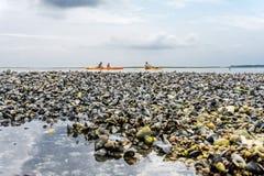 Famille en des kayaks et tournée de canoë photos stock