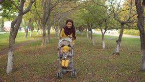 Famille en parc ensoleillé d'automne banque de vidéos
