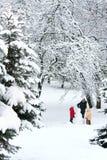 Famille en stationnement de l'hiver Images stock