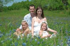 Famille enceinte Photo stock