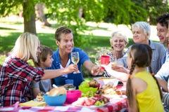 Famille et amis ayant un pique-nique Photo libre de droits